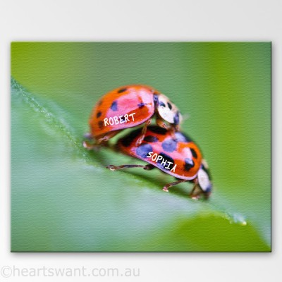 Love Ladybirds Personalised Canvas Art