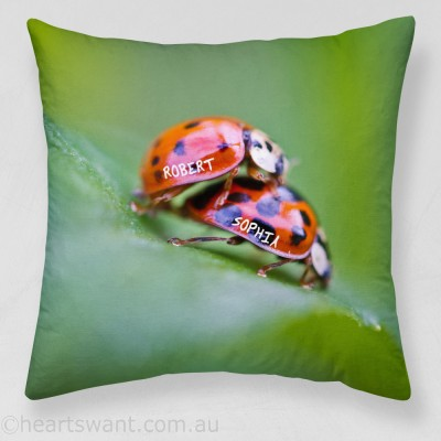 Love Ladybirds Personalised Cushion Cover